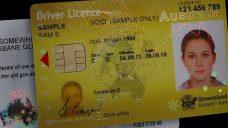 Austrian Driver's License